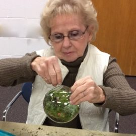 Terrarium Workshop Nov 11