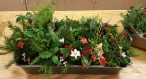 2016 11 Tray of arrangements for Village Project